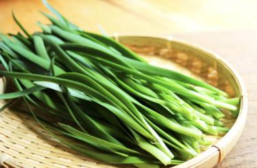 ニラは栄養豊富で殺菌効果があり、血液もサラサラにしてくれる理想的な食品だ。