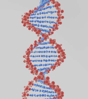 光る鑑賞フィッシュからデザイナーベイビーまで遺伝子操作はどこまで進むのか。