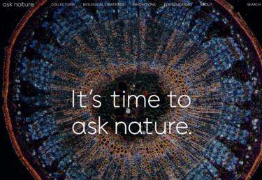 バイオミメティクスとは自然の生物は進化の中で生まれた叡智に学ぶ工学的アプローチだ。