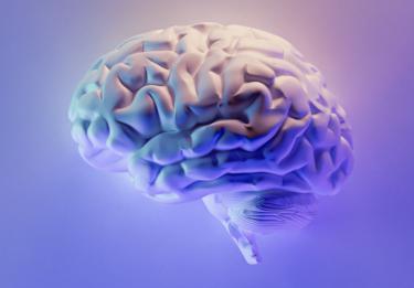科目履修生としての「脳型情報処理機械論」を受講したら外人学生の多さにびっくり。